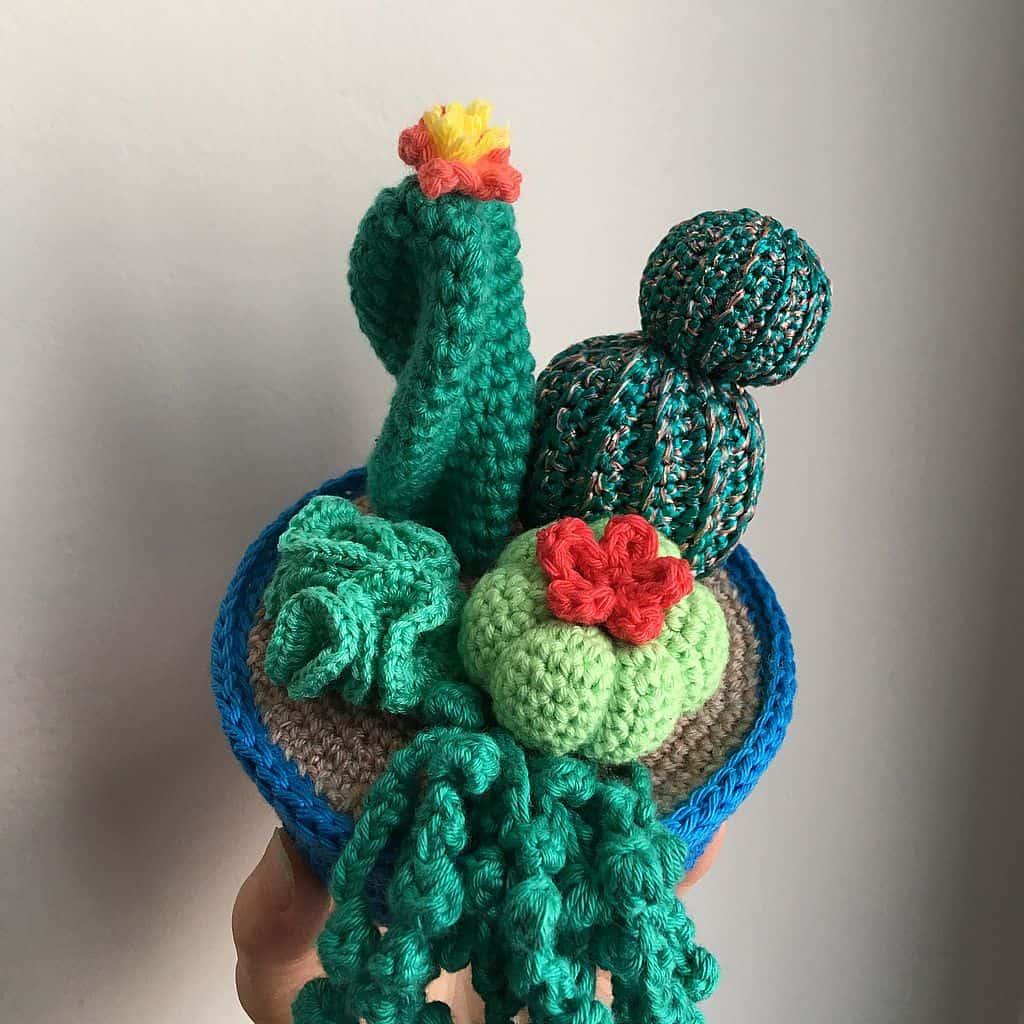 Home Decor Amigurumi | Cactus en crochet, Projets de crochet et ... | 1024x1024